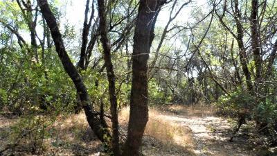 Diamond Springs Residential Lots & Land For Sale: 10 Tullis Mine Road