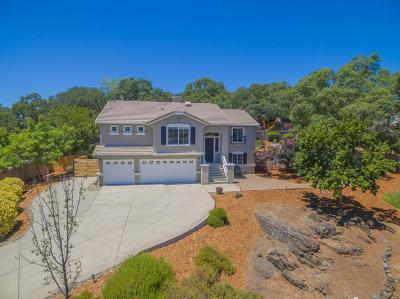 El Dorado Hills Single Family Home For Sale: 2203 Summer Drive