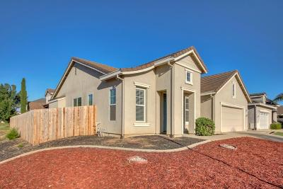 Elk Grove Single Family Home For Sale: 10400 Canadeo Circle