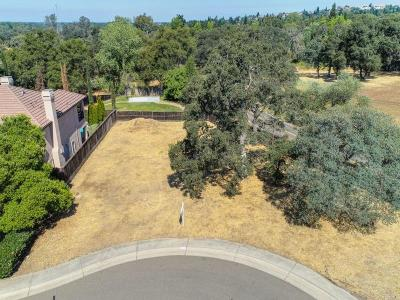 Folsom Residential Lots & Land For Sale: 153 Chimney Bluff Court