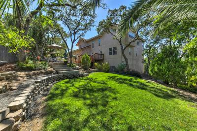 El Dorado Hills Single Family Home For Sale: 3131 Warren Lane