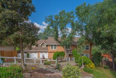 Folsom Single Family Home For Sale: 1118 River Rock Drive
