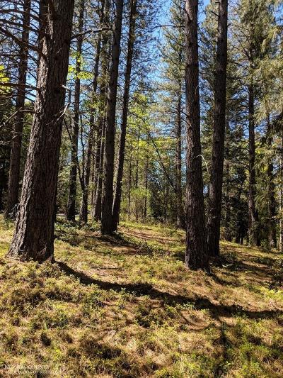 Nevada County Commercial Lots & Land For Sale: 18829 Louis Road