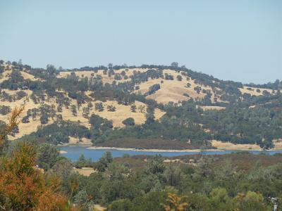Amador County Residential Lots & Land For Sale: 5251 Oak Meadow Court