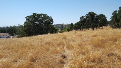 Residential Lots & Land For Sale: 6738 Stabulis Road