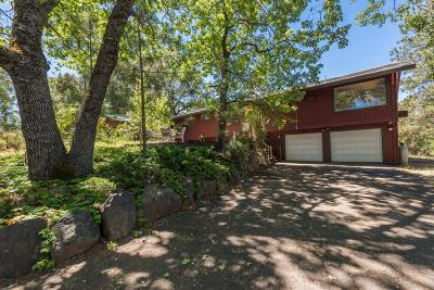 Placerville Single Family Home For Sale: 3081 Saddlehill Road