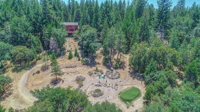 Volcano CA Single Family Home For Sale: $479,000