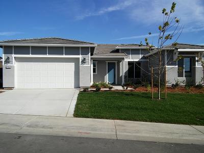 Rocklin Single Family Home For Sale: 3264 Hoot Owl Loop