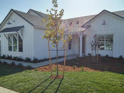 Rocklin Single Family Home For Sale: 3300 Deer Trail Lane