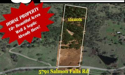 Pilot Hill Residential Lots & Land For Sale: 5791 Salmon Falls Road