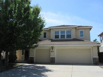 Elk Grove Single Family Home For Sale: 8612 Aubrey Court