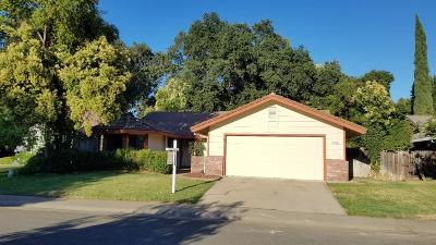 Carmichael Single Family Home For Sale: 3020 Paragon Way