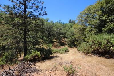 Colfax Residential Lots & Land For Sale: S Auburn Street