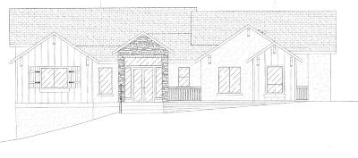 Auburn Single Family Home For Sale: 1800 High Street