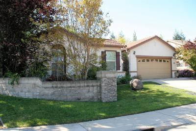 Rocklin Single Family Home For Sale: 2101 Collet Quarry Drive