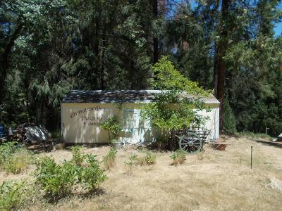 Wilseyville CA Residential Lots & Land For Sale: $185,000