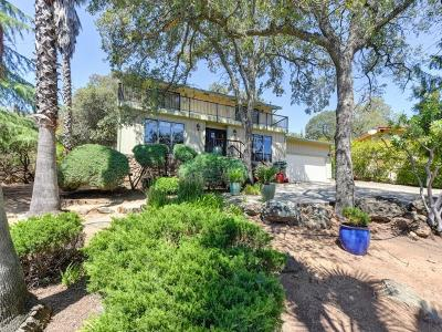 El Dorado Hills Single Family Home For Sale: 3620 Ridgeview Drive