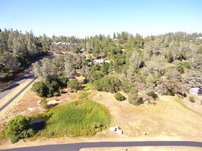 Meadow Vista Residential Lots & Land For Sale: 2000 Long View Drive
