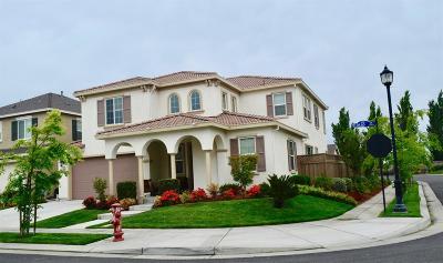 Mountain House Single Family Home For Sale: 779 N Plumas Dr