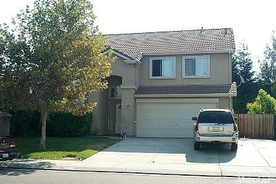 Stockton Single Family Home For Sale: 10482 River Oaks Drive