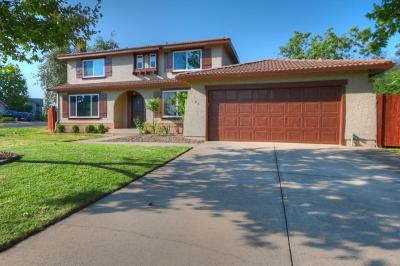 Folsom Single Family Home For Sale: 100 Rock Ravine Court