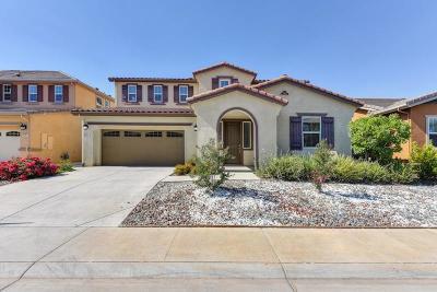 Elk Grove Single Family Home For Sale: 8605 Vizela Way