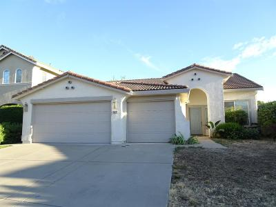 Elk Grove Single Family Home For Sale: 5514 Birdview Way