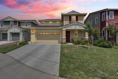 Elk Grove Single Family Home For Sale: 9685 Philta Way