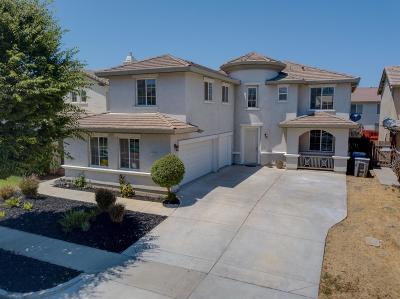 Patterson Single Family Home For Sale: 1427 Mesa Creek Drive