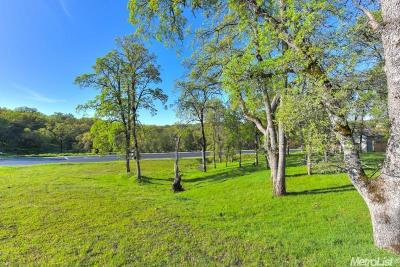 El Dorado Hills Residential Lots & Land For Sale: 4005 Raphael Drive