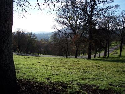 Yuba County Residential Lots & Land For Sale: 1 Wades Way