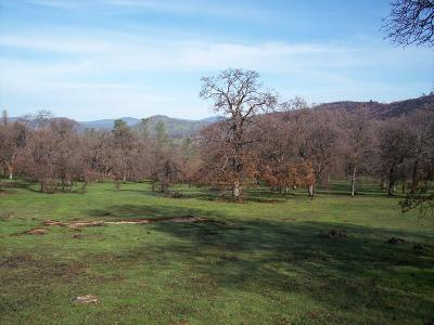 Yuba County Residential Lots & Land For Sale: 6 Wades Way