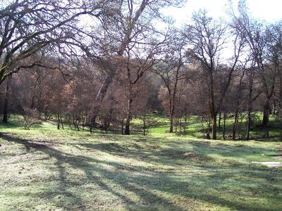 Yuba County Residential Lots & Land For Sale: 12 Wades Way