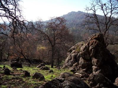 Yuba County Residential Lots & Land For Sale: 20 Strong Box Court