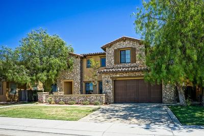 Manteca Single Family Home For Sale: 4048 Chiavari Way