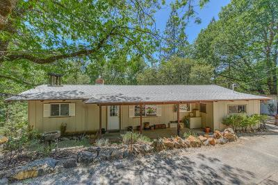 Pine Grove Single Family Home For Sale: 14377 Pine Cone Lane