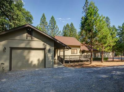 Colfax Single Family Home For Sale: 1465 Robbers Ravine Road