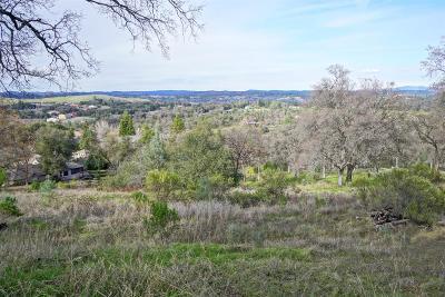 El Dorado County Residential Lots & Land For Sale: 3317 Morel Way