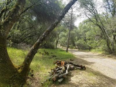 El Dorado County Residential Lots & Land For Sale: Quail Run Road