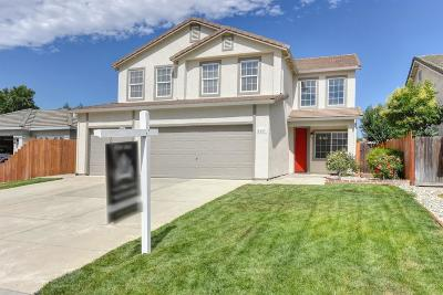 Elk Grove Single Family Home For Sale: 8457 Ceonothus Court