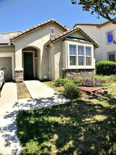 Manteca Single Family Home For Sale: 1243 Laurel Park Circle