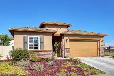 Sacramento Single Family Home For Sale: 4344 Libyan Sea Lane