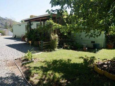 Douglas City Single Family Home For Sale: 821 Reo Lane