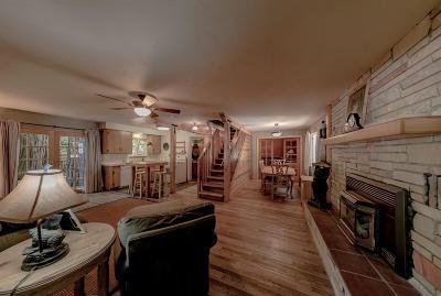 El Dorado County Single Family Home For Sale: 1384 Silver Fork Road