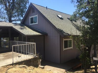 Copperopolis Single Family Home For Sale: 249 Thomson Lane