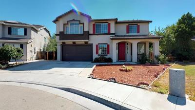 Tracy Single Family Home For Sale: 4594 Crabapple Court