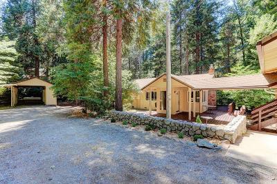 Nevada Single Family Home For Sale: 15561 Cascade Loop