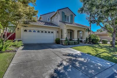 Stockton Single Family Home For Sale: 5896 Riverbank Circle