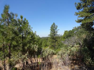 Pine Grove Residential Lots & Land For Sale: 13851 Tank Ct.