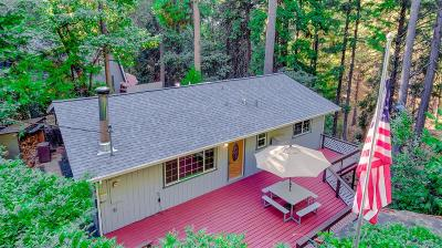 Pollock Pines Single Family Home For Sale: 5677 Sierra Springs Drive